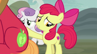 Apple Bloom comforting Big McIntosh S7E8