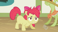 Apple Bloom has a messy mane S2E12
