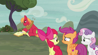 Cutie Mark Crusaders feel sorry for Big Mac S7E8