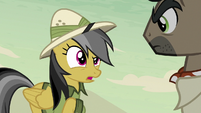 Daring Do -free to steal whatever you wanted- S7E18