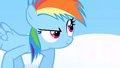Filly Rainbow ready to race S1E23.png