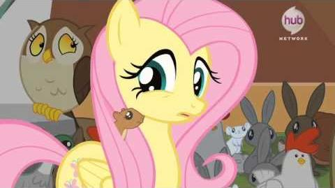 New My Little Pony Friendship is Magic Season 4 Premiere Preview via The Hub