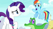 Rarity and Rainbow Dash confused S8E18