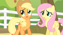 Applejack '..buildin' this so-called 'sanctuary'...' S4E07