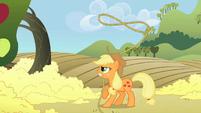 Applejack twirling lasso S2E01