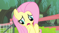 Fluttershy 'Well, you see, I' S4E14.png