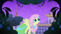Fluttershy looking for the meadowlark S1E26.png