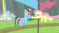 Fluttershy passes baton to Rainbow S4E10
