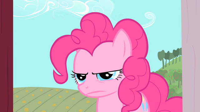 File:Pinkie Pie gives Applejack a stare S1E25.png