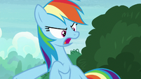 "Rainbow ""as soon as we find this amulet"" S8E17"