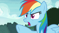 "Rainbow Dash ""any of the things I like!"" S8E17"