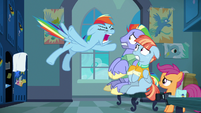 "Rainbow Dash shouting ""too much!"" S7E7"