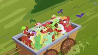 S03E08 Atak nietoperzy owocowych