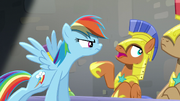 S05E15 Rainbow przeszkadza w śledztwie