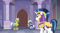 Shining Armor observing royal guards S9E4