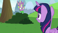 Spike falling into a bush S8E24