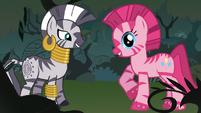 Zecora x Pinkie Pie