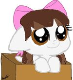 A jenny in a box by hayleemarie00-d8dckqx