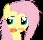 Fluttershy Brushie by o-Fluttershy-o