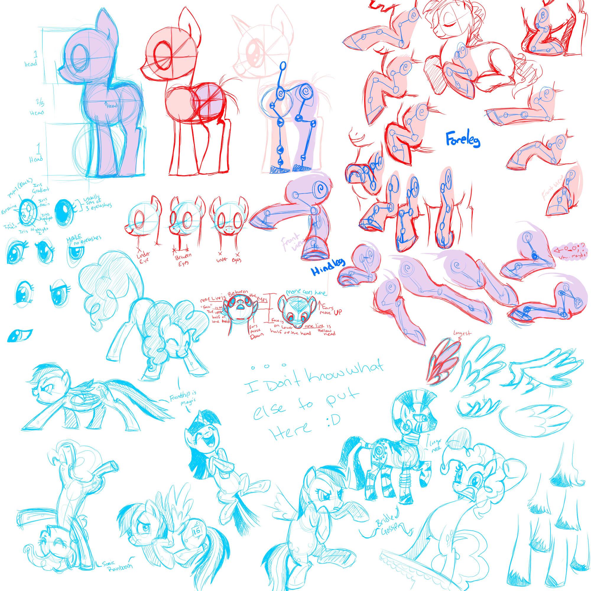 Image - Pony anatomy drawing guide.jpg | My Little Pony Fan Labor ...