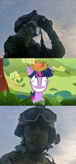 Twilight Sparkle crazy meme comic