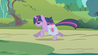 Twilight galloping toward Fluttershy's cottage S1E10