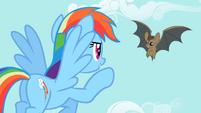 Rainbow Dash pointing at the bat 2 S2E07
