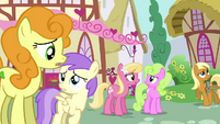 "Confused background ponies ""toupee?"" S02E18"