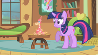 "Twilight ""what is Celestia's pet doing here?"" S01E22"