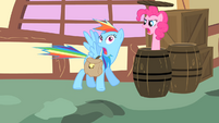 Pinkie Pie pops out of a barrel S1E25