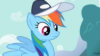 Rainbow Dash considering what Fluttershy said S2E7