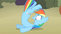 Rainbow Dash on the ground without her wings S02E01
