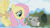 Fluttershy waking up a bunny S01E11