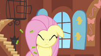 Fluttershy shaking off the pellets S2E19