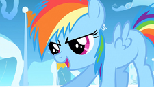 Rainbow Dash 'What do you have in mind' S1E23