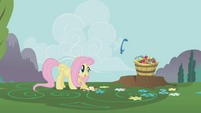 Parasprite about to eat bucket of apples S1E10