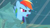 "Rainbow Dash ""Earth ponies are numbskulls!"" S2E11"