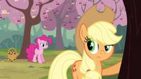 Pinkie Pie starts to bug Applejack with cherry changa S2E14