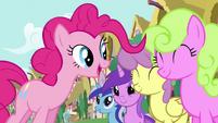 Pinkie Pie's song pony crowd 3 S2E18