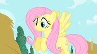 """Fluttershy to Twilight """"The Everfree Forest?"""" S1E17"""