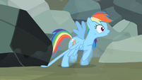 Rainbow Dash's feather is trapped S2E7