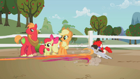 Ponies dash to play with Granny Smith S2E12