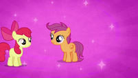 Apple Bloom and Scootaloo before Sweetie Belle joins them S2E17