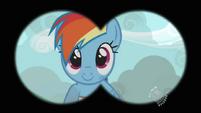 Rainbow Dash field of view S2E7