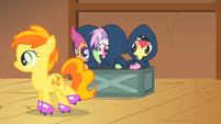 """Sweetie Belle tells Peachy Pie """"break a leg!"""" S1E18"""