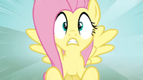 Fluttershy shocked3 S02E19