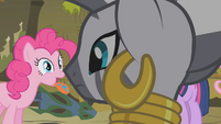 Zecora turns to look at Pinkie S1E09