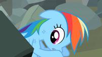 Rainbow Dash notices Tank lifting the boulder S2E07