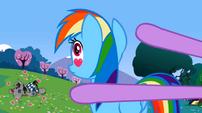 Rainbow Dash eyes S02E03