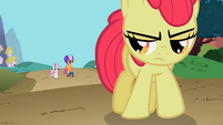 Sweetie Belle and Scootaloo talk to Apple Bloom S2E06